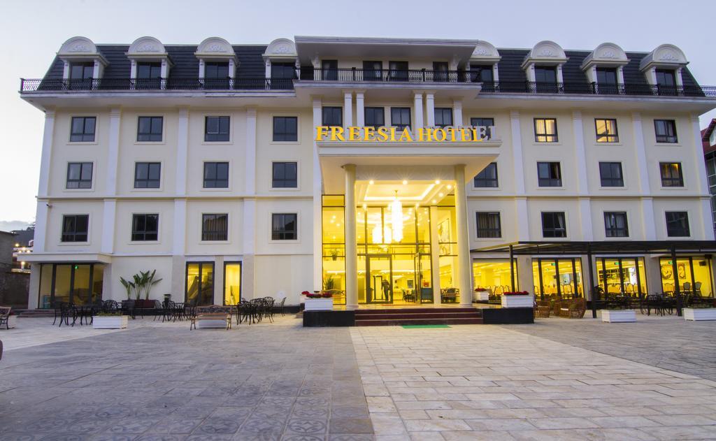 Sapa Freesia Hotel - Sapa